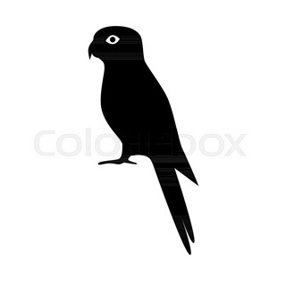 320x320 Cockatoo Parrot Silhouette Icon In Flat Style. Australian Tropical
