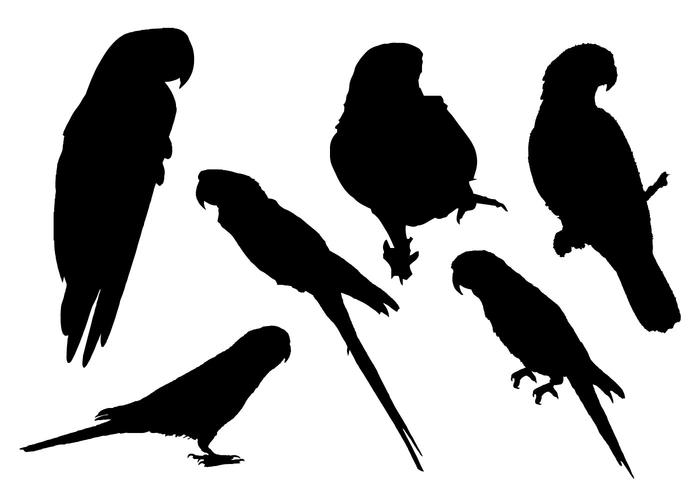700x490 Free Parrot Silhouette Vector