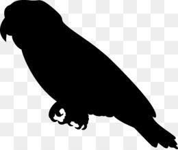 260x220 Free Download Bird Cockatiel Cockatoo Silhouette Clip Art