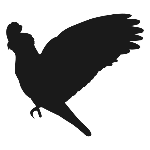 512x512 Parrot Silhouette