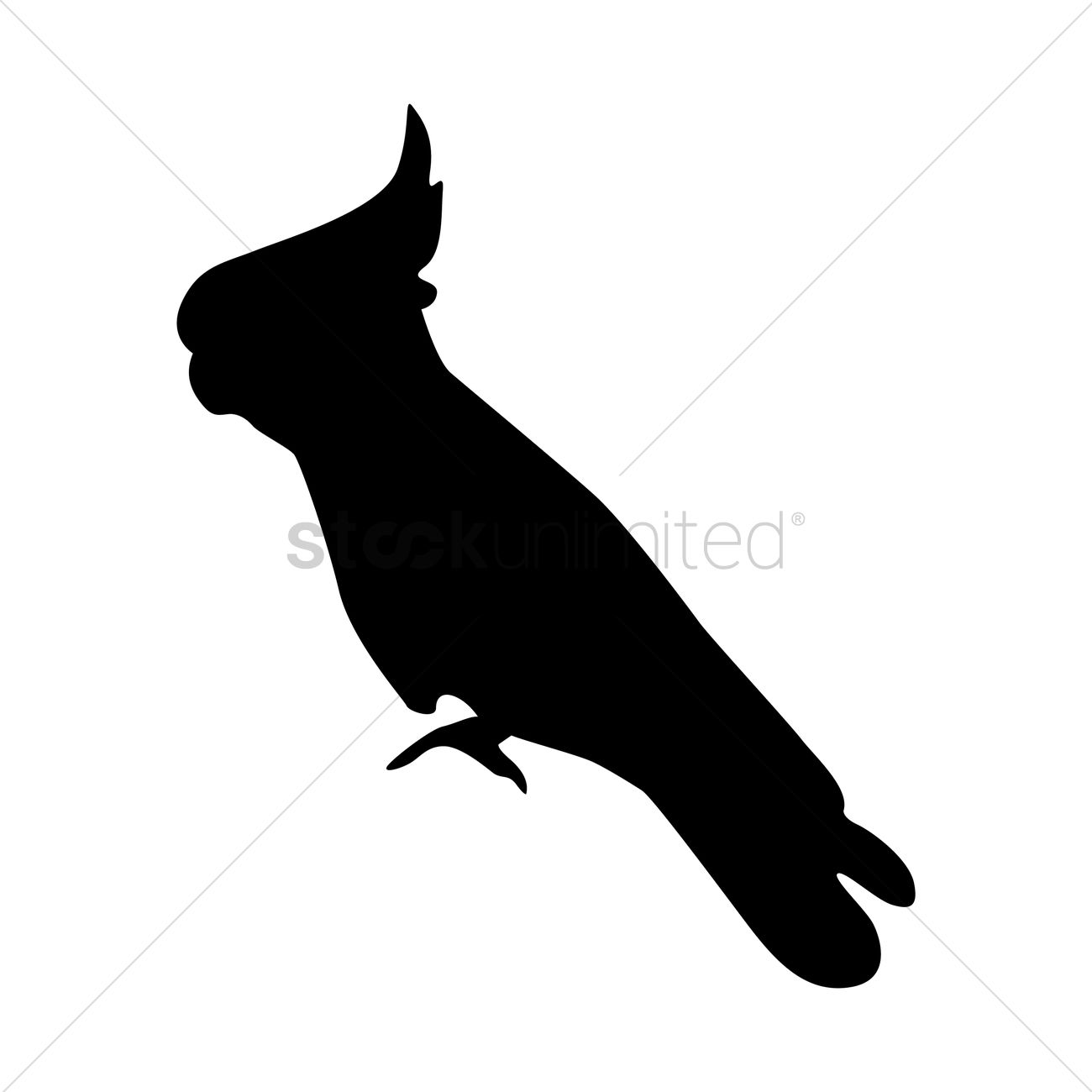 1300x1300 Silhouette Of Cockatoo Vector Image