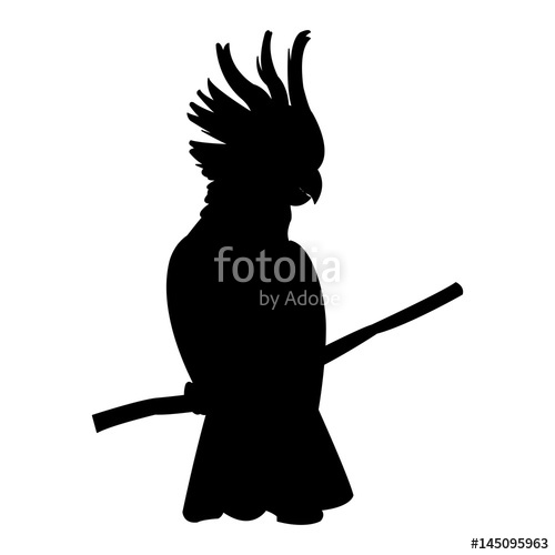 500x500 Cockatoo Tropical Bird Icon Image Vector Illustration Design Black