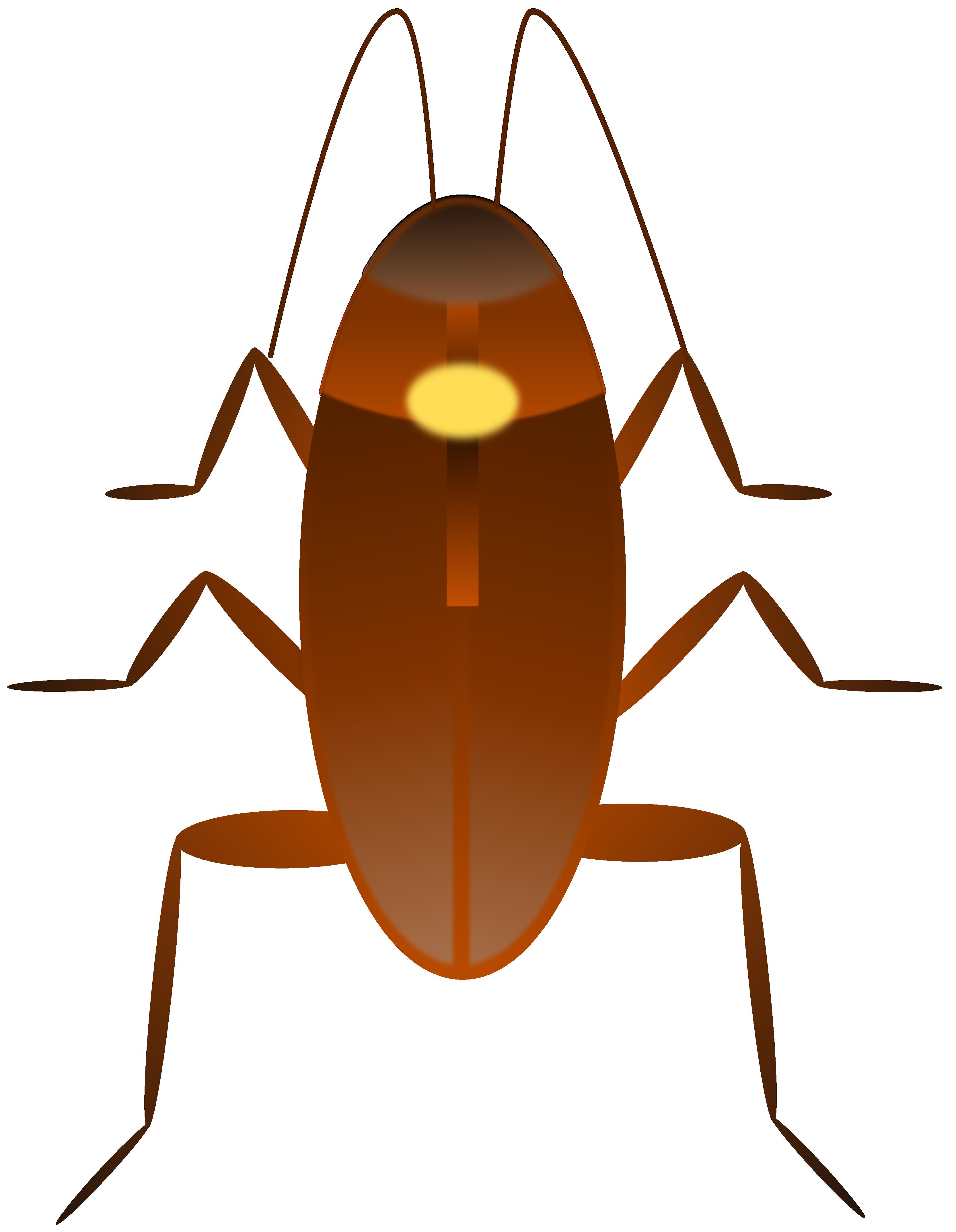 3333x4294 Cockroach Clipart Vector