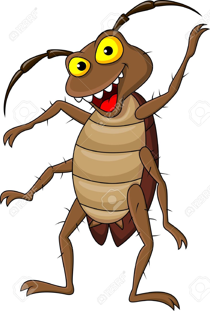877x1300 Cockroach Silhouette Vector Image