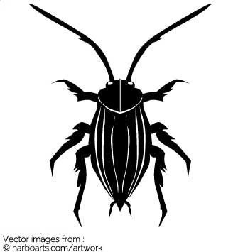 335x355 Download Cockroach