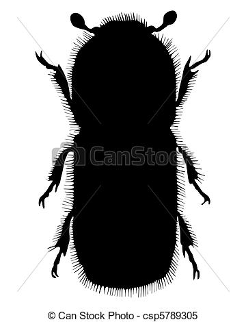 360x470 Bark Beetle Silhouette Stock Illustrations