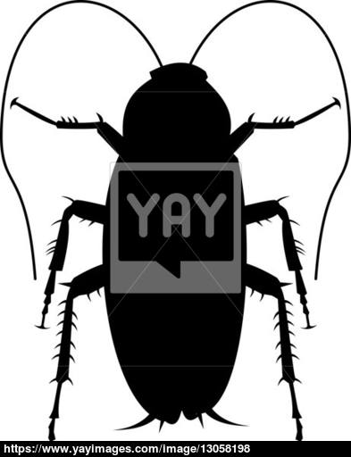 393x512 Cockroach Silhouette Image