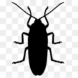 260x261 Cockroach Png Images Vectors And Psd Files Free Download
