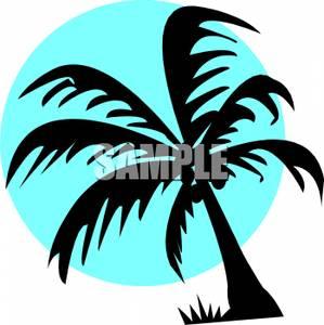 299x300 Coconut Tree Silhouette Clipart