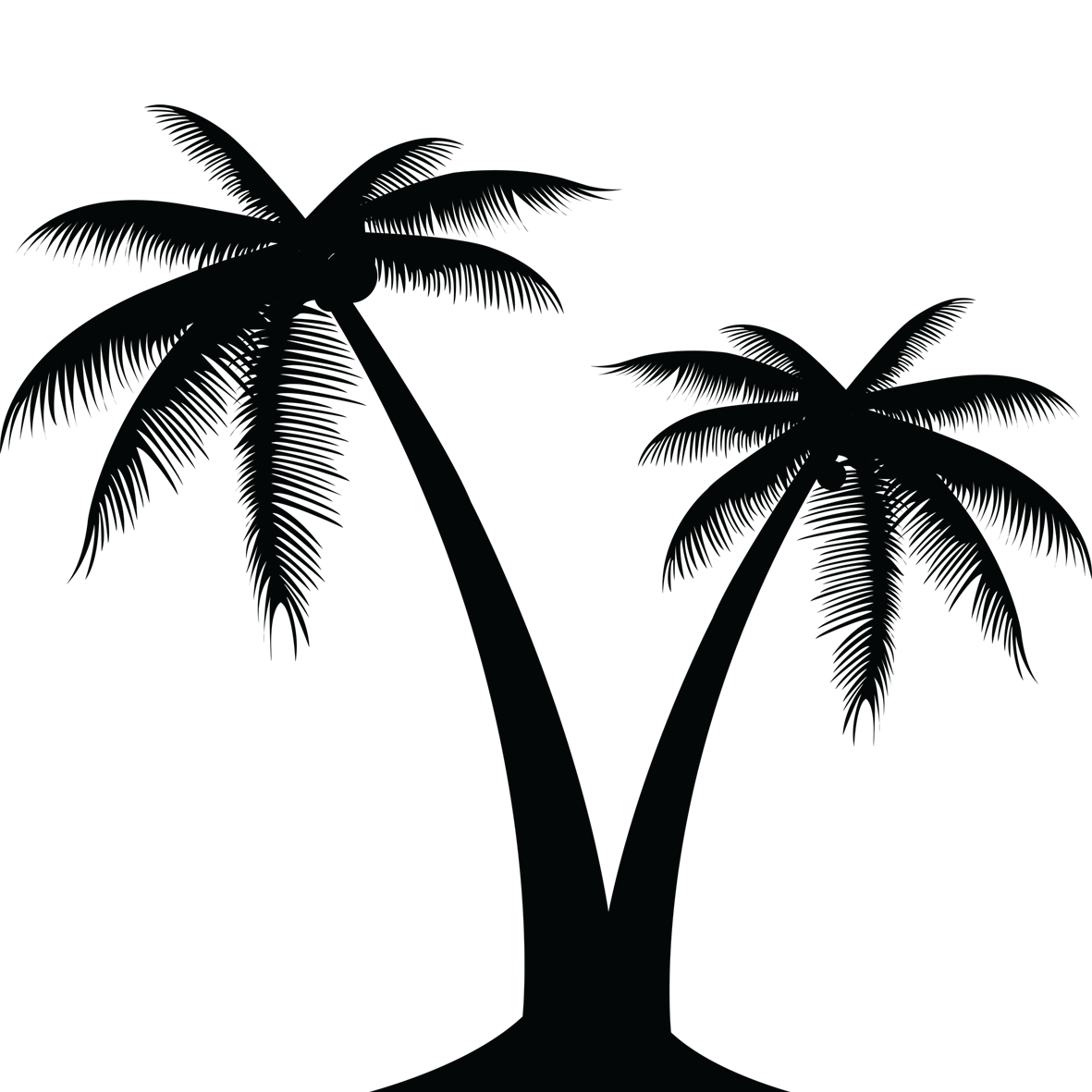 1181x1181 Cp Paurb Palm Tree Graphic Silhouette Source Abuse Report Simple