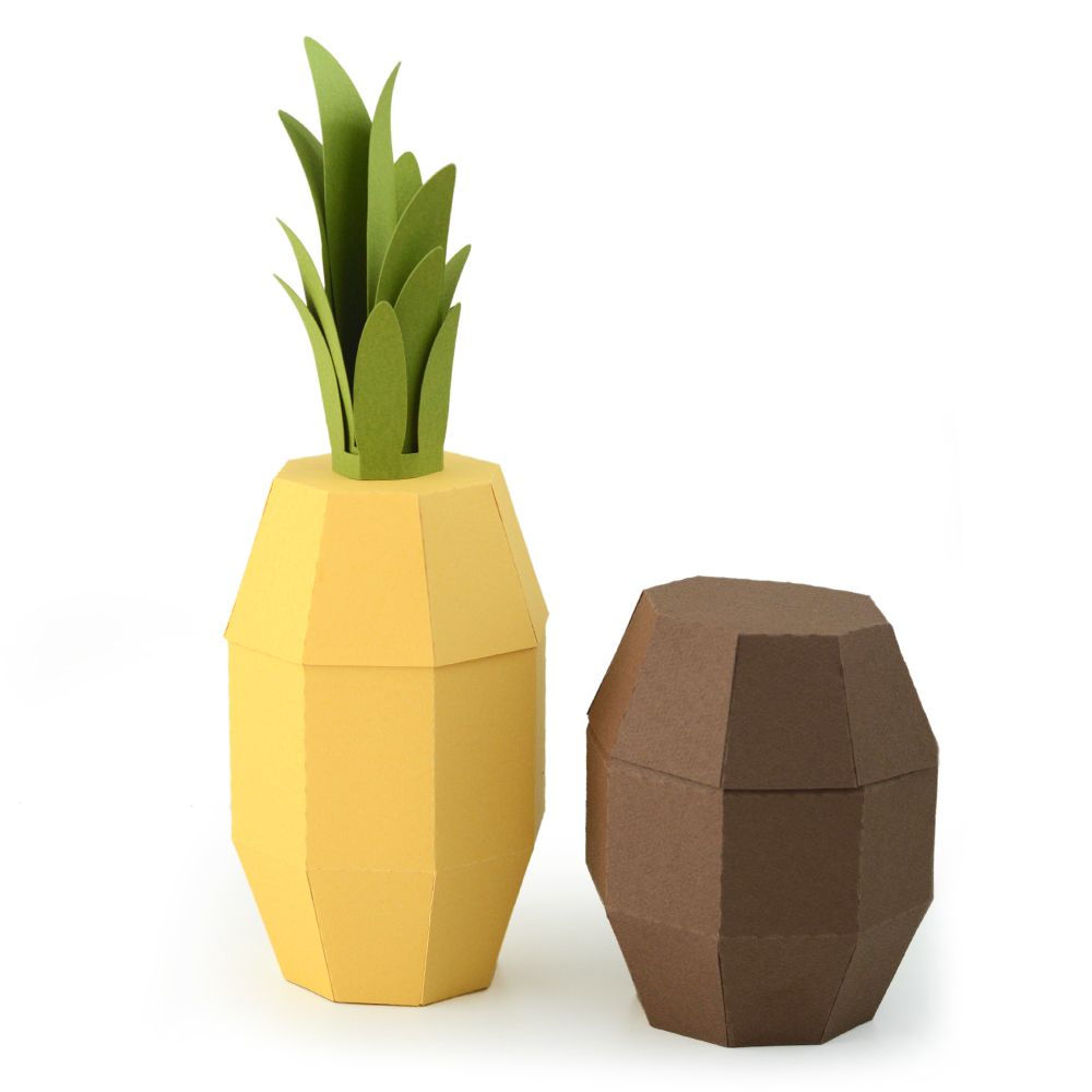 1000x1000 Pineapple And Coconut Box Tutorial For Silhouette Yw Recognition