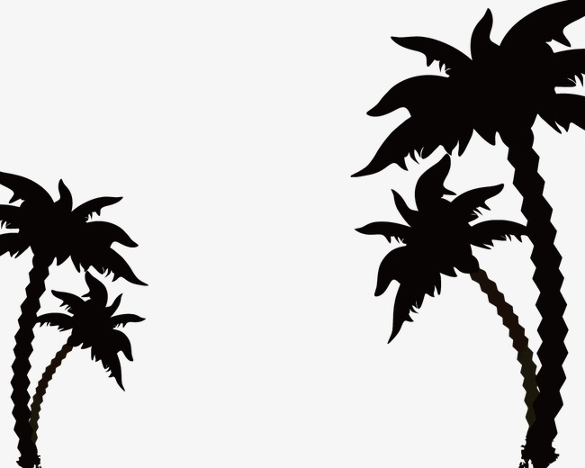 650x520 Coconut Tree Silhouette, Sketch, Coconut Tree, Vector Png