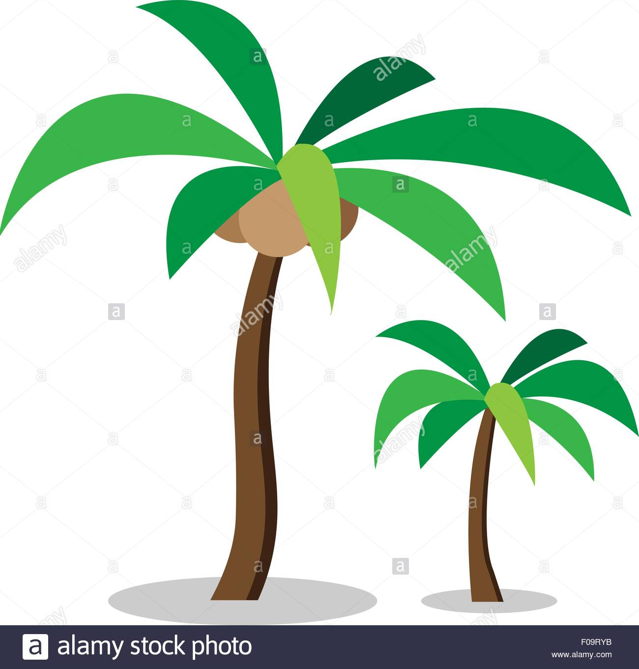 1300x1361 Two Coconut Trees With Coconut ,vector Stock Vector Art