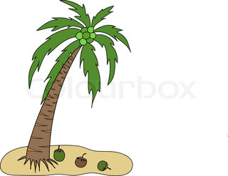320x247 Palm Tree With Coconut, Element For Design, Vector Illustration