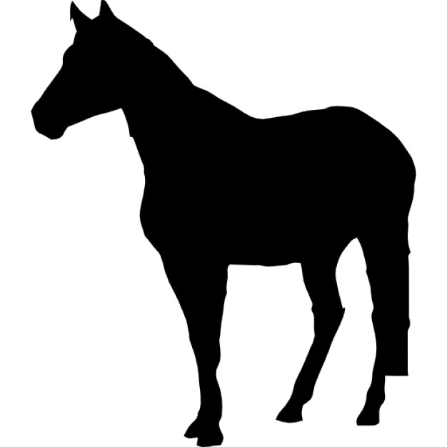 626x626 Horse Standing Black Silhouette Icons Free Download
