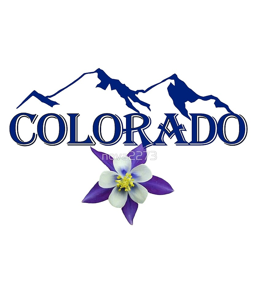 833x1000 Blue Colorado With Mountain Silhouette And Columbine Flower By