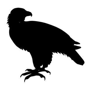 320x295 Eagle Silhouette 2 Decal Sticker