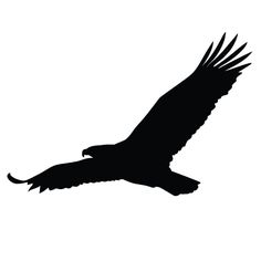 236x236 Eagle Silhouette Collection Misc. Eagle Silhouette
