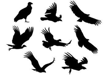 352x247 Condor Silhouette Free Vector Pack Free Vector Download 388863