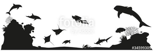 500x167 Unterwasserwelt Silhouette Landschaft Stock Image And Royalty