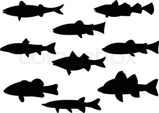 320x228 Blacktip Reef Shark Silhouettes (Carcharhinus Melanopterus