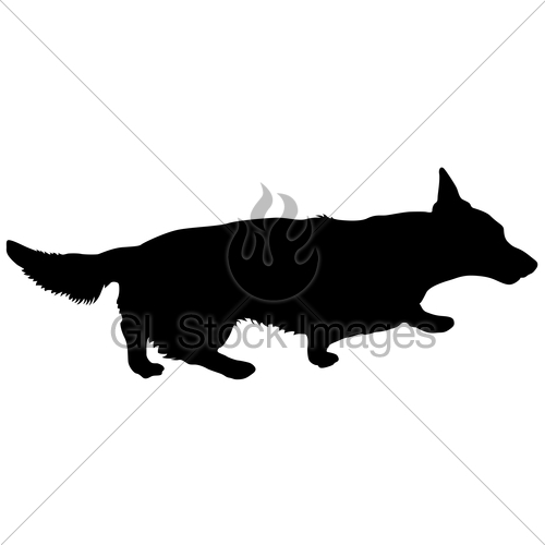 500x500 Welsh Corgi Dog Silhouette On A White Background Gl Stock Images