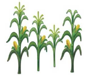 300x266 Corn Field Clipart