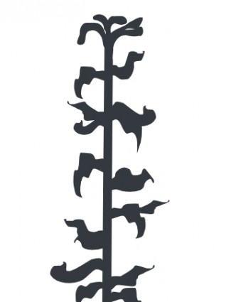 325x425 Corn Stalk Like Plant Vector Misc Free Vector Free Download