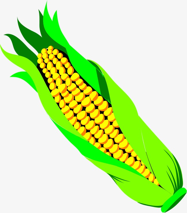 650x739 Cartoon Corn, Cartoon, Corn, Yellow Png Image And Clipart For Free