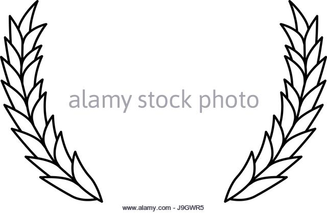 640x417 Corn Field Grain Crop Summer Black And White Stock Photos Amp Images