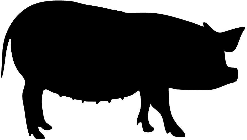 1000x568 Silhouette Clipart Pig