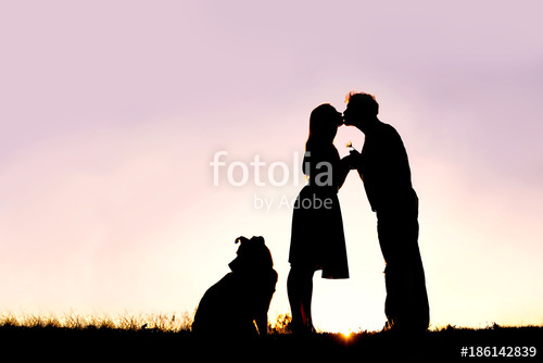 500x334 Silhouette Of Loving Young Couple Kissing Outside On Date