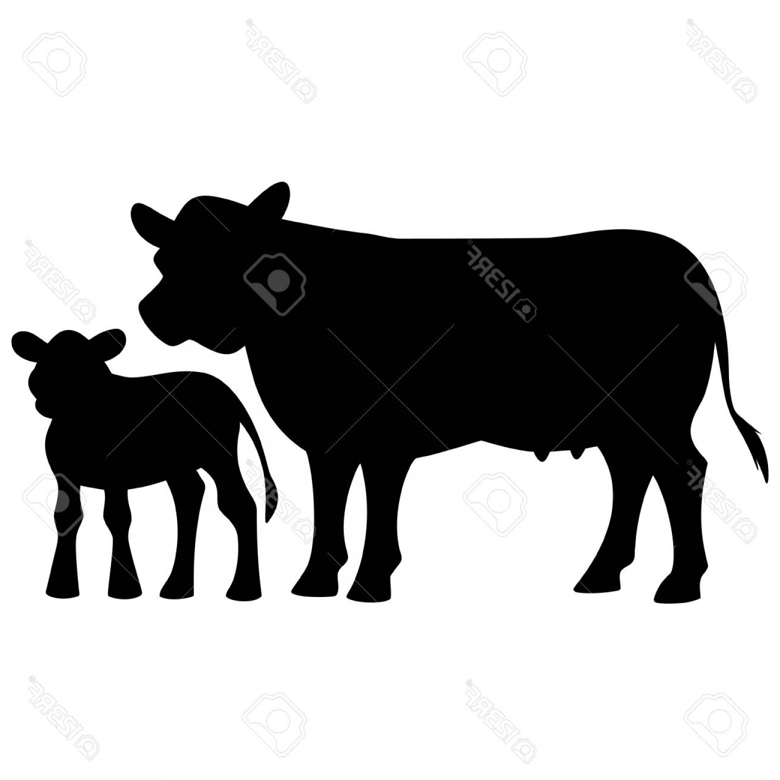 1560x1560 Beautiful Photostock Vector Cow And Calf Silhouette Lazttweet