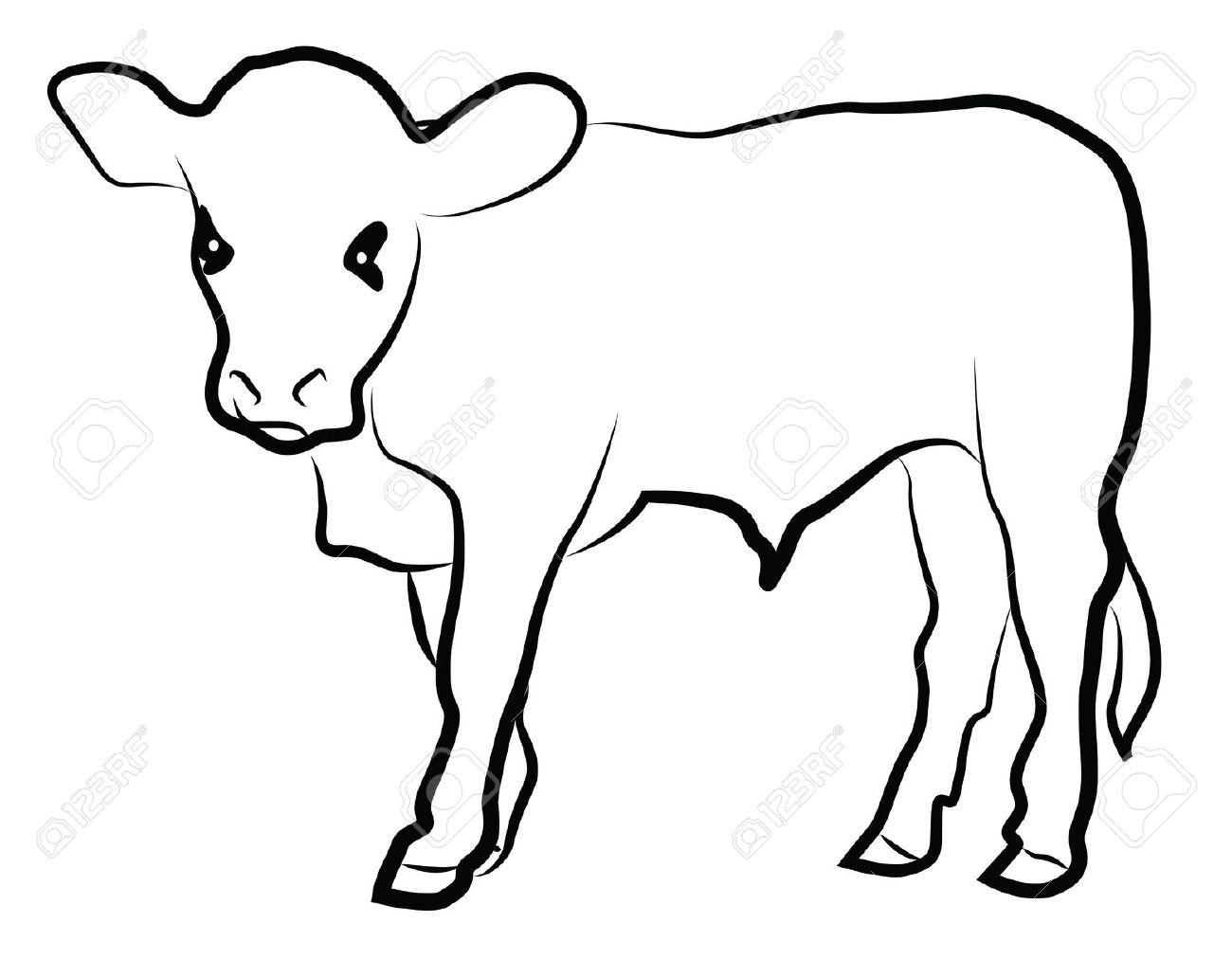 1300x1012 Beef Clipart Calf