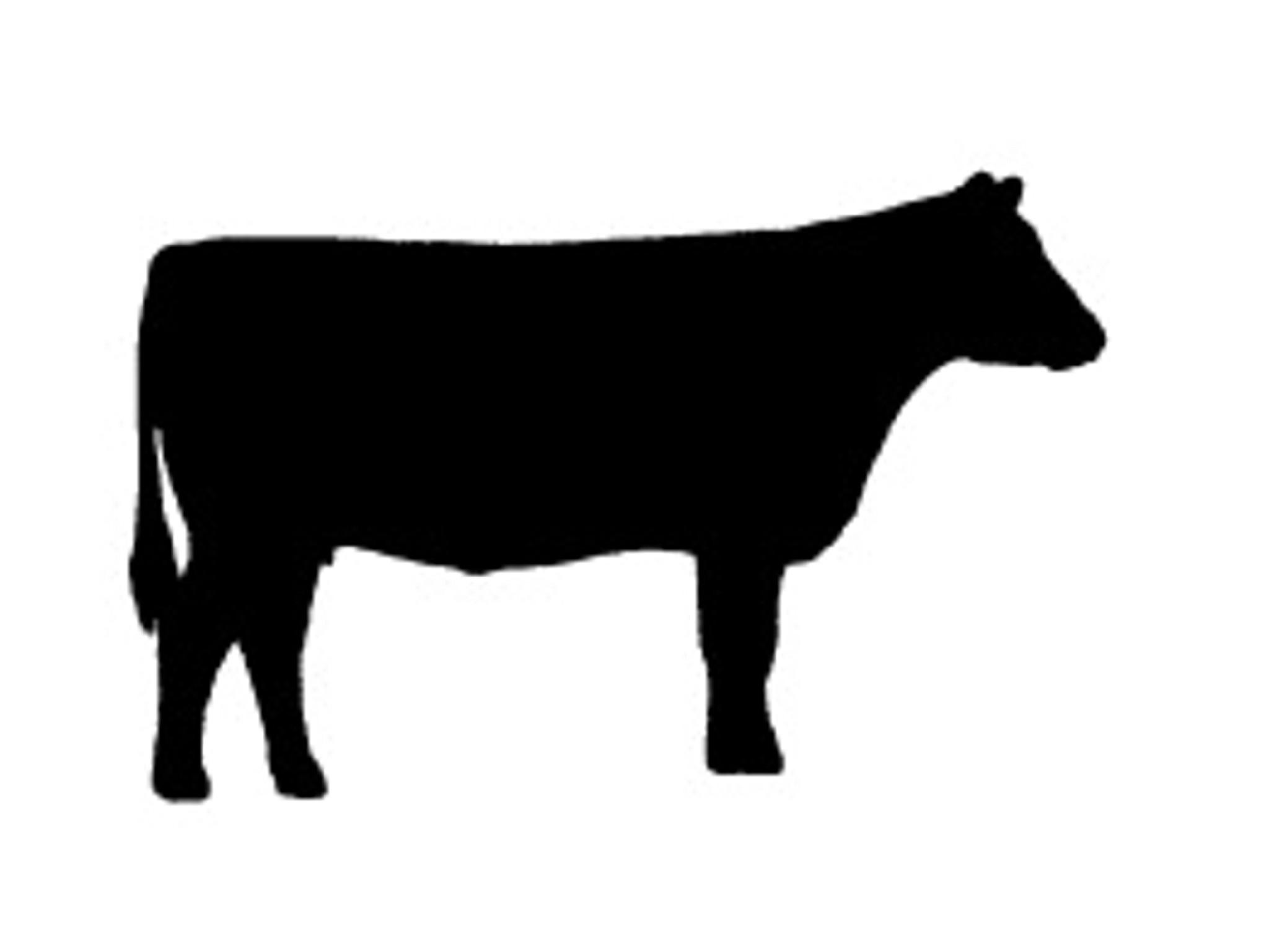 2048x1536 Dairy Cow Head Silhouette