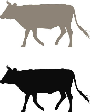 372x463 Cow Silhouette Premium Clipart