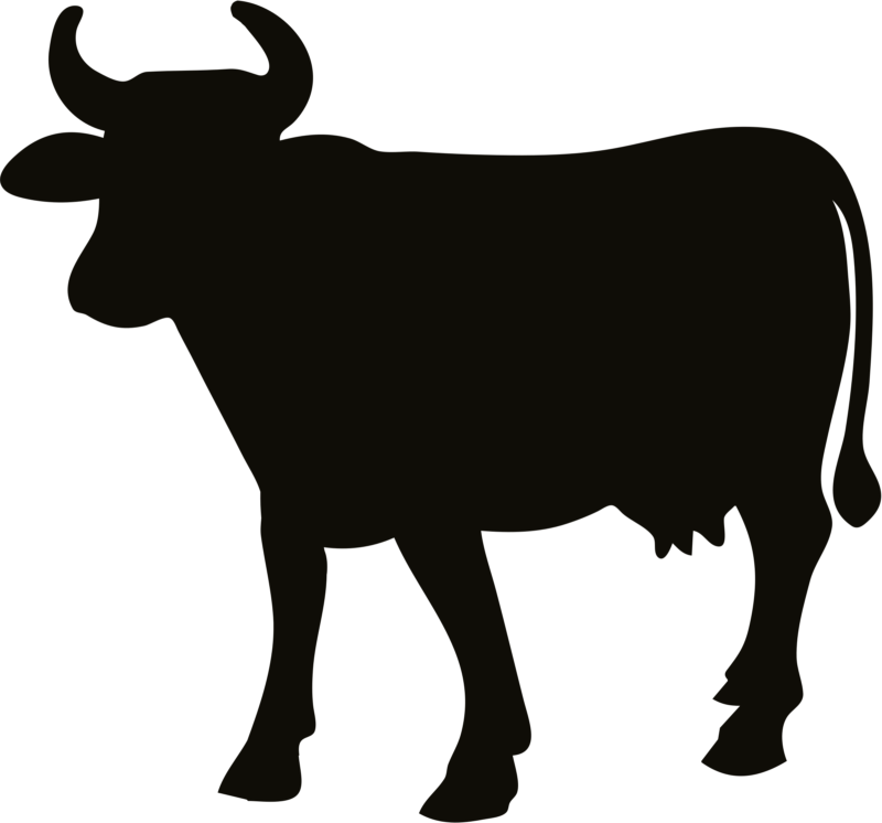 800x746 Free Cow Clipart Black And White Images