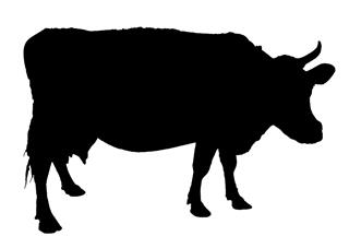 320x227 Cow Silhouette V6 Decal Sticker