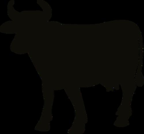 500x466 Cow Silhouette Image Public Domain Vectors