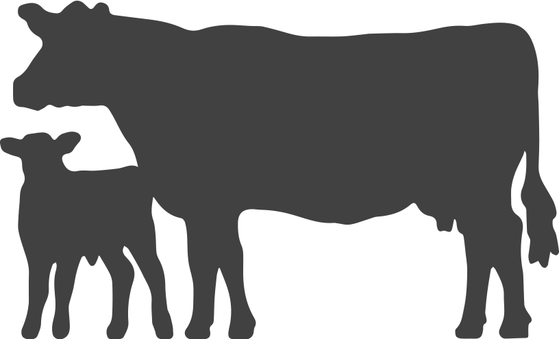 Cow Silhouette Png