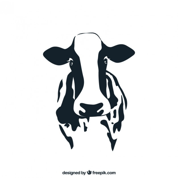 626x626 Cow Vector Free Download