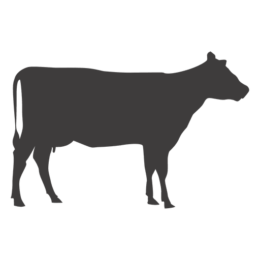 512x512 Cow Walking Vector