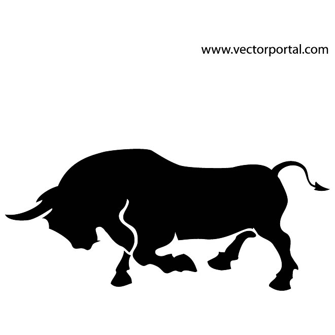 660x660 Longhorn Cattle Clipart Vector
