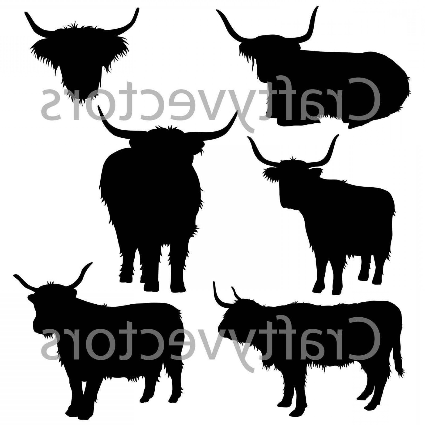 1800x1800 Chic Highland Cow Silhouettes Vector File Svg Lazttweet