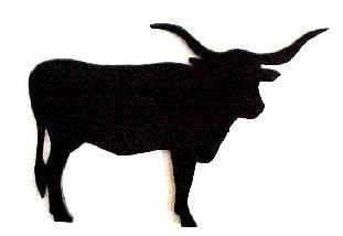 311x214 Longhorn Cattle Clipart