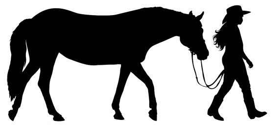 570x279 Western Horse And Rider Wall Decal