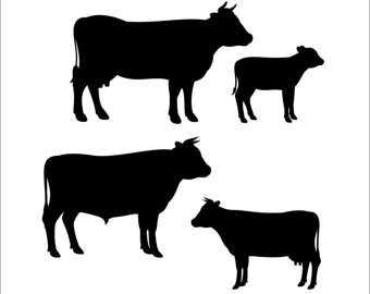 340x270 Cow And Calf Silhouette Clipart Collection