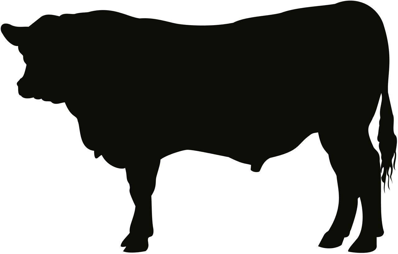 1280x818 Free Images Angus, Bull, Cattle, Cow, Art, Artwork, Silhouette