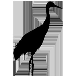 Crane Bird Silhouette