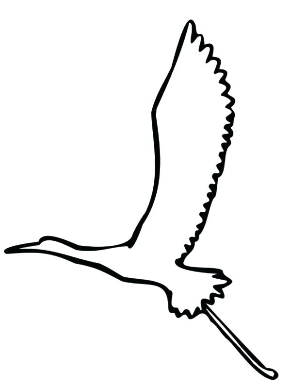 600x799 Bird Outline Graphic Bird Flying Outline Collection Bird Flying
